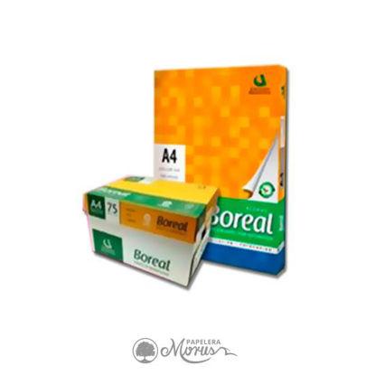 Imagen de BOREAL A4   21x29.7 75gs